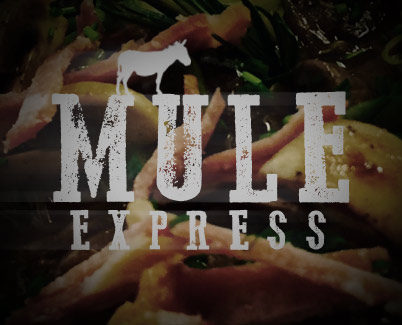 Mule Express - Hungry Mule Catering Bridport Dorset